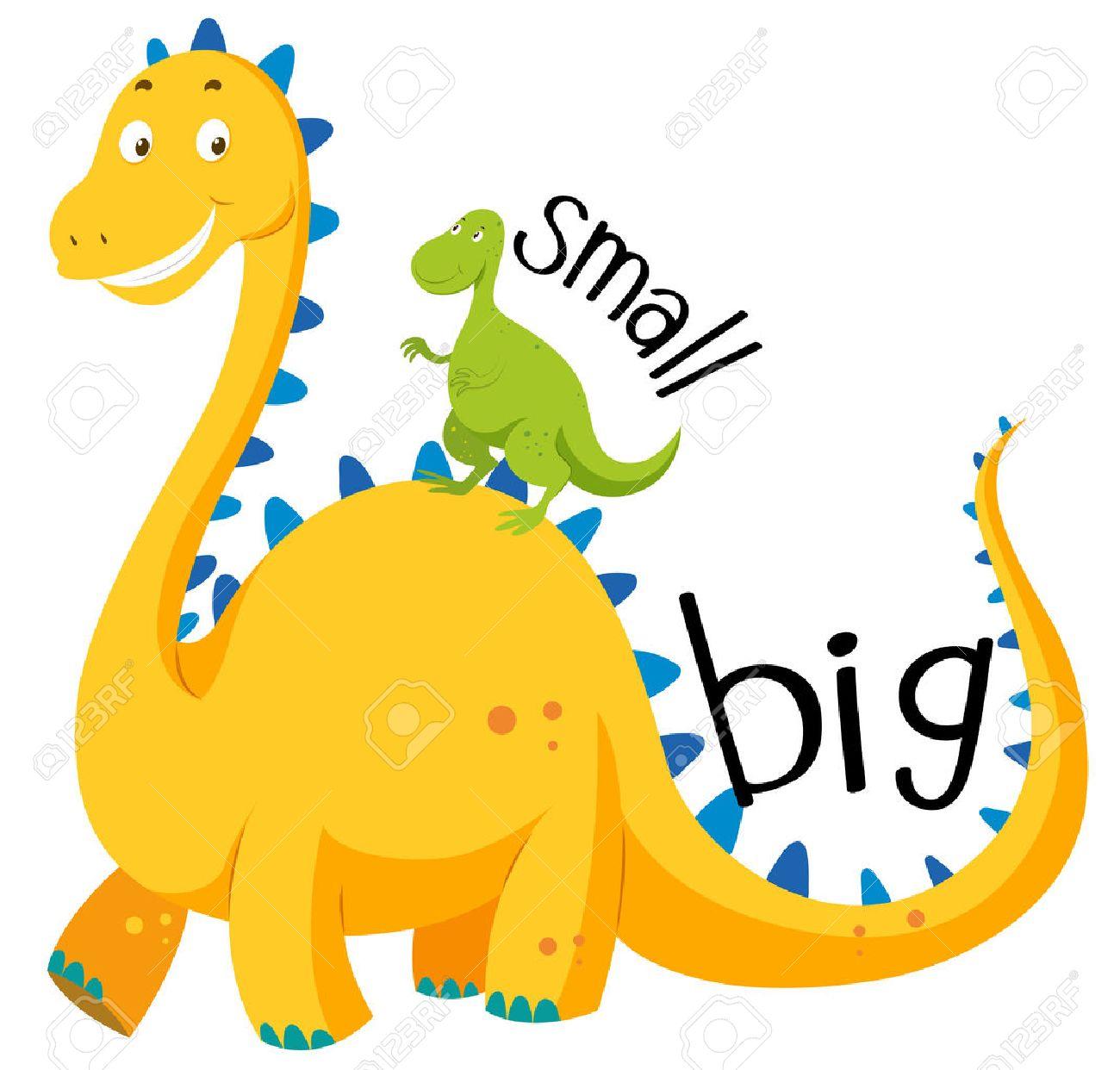tính từ trong tiếng anh big và small